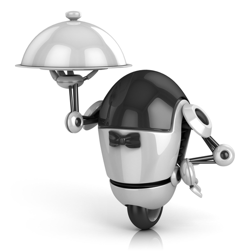 Robot servant