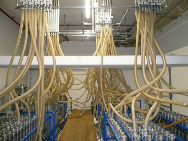 masterflex hoses