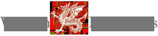 Wyvern Mouldings Ltd logo Companies